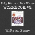 Store_Wrkbk2_Essay-1